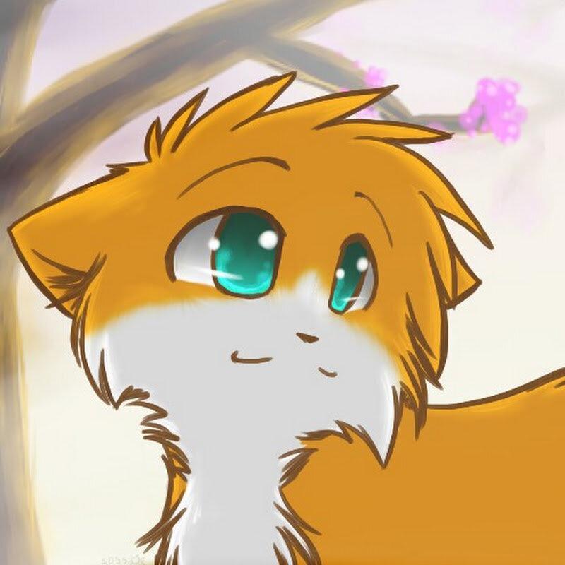 Картинки котов воителей в аниме