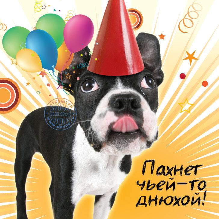 Завтра день рождения у тебя поздравления
