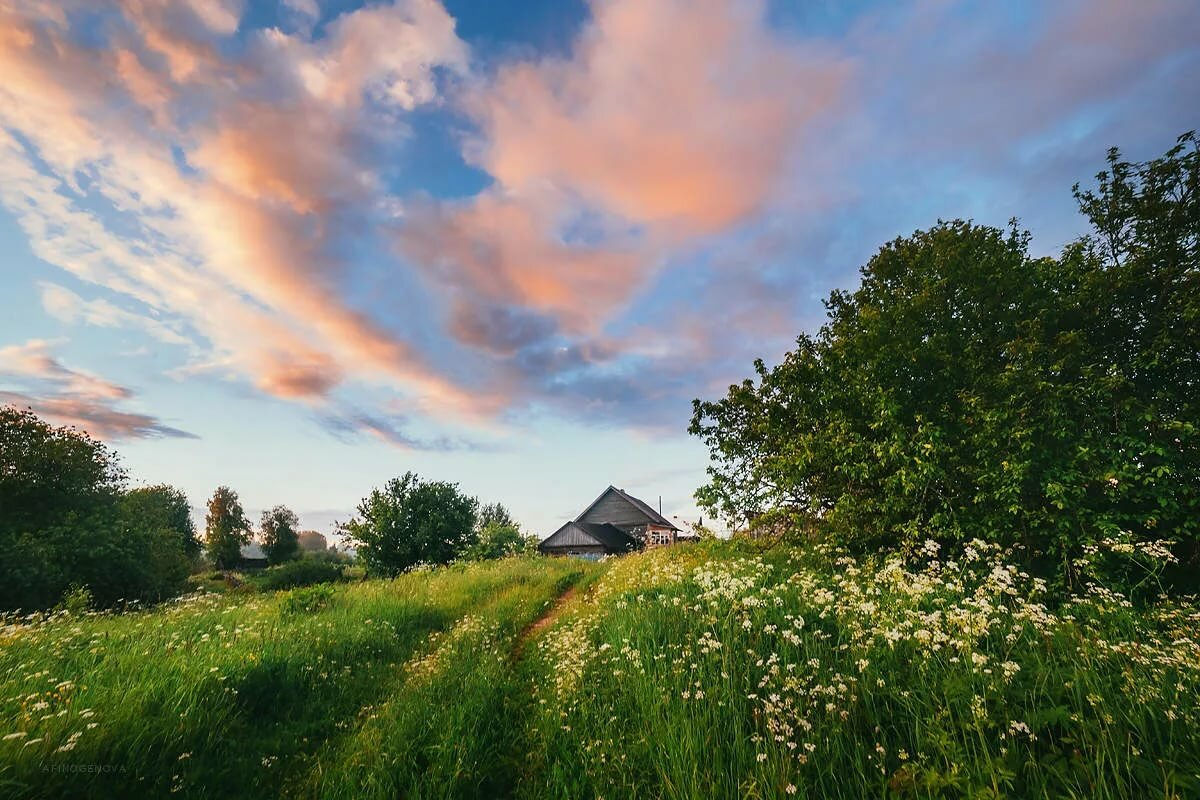 Картинки села природа