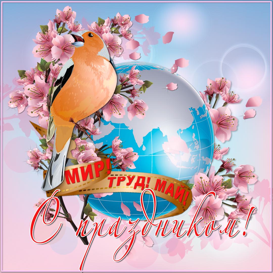 поздравить поздравительные открытки 1 мая