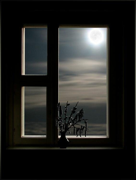 Ночь через окно картинки