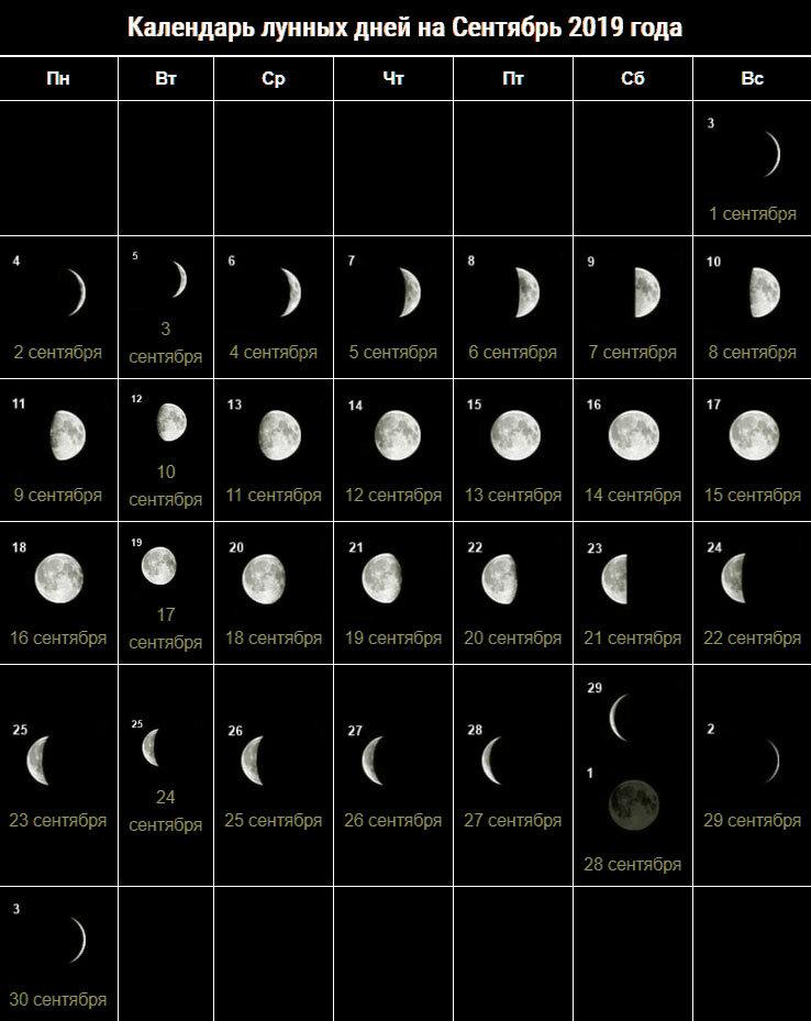 Лучший Лунный День Для Начала Похудения. Лунный календарь питания