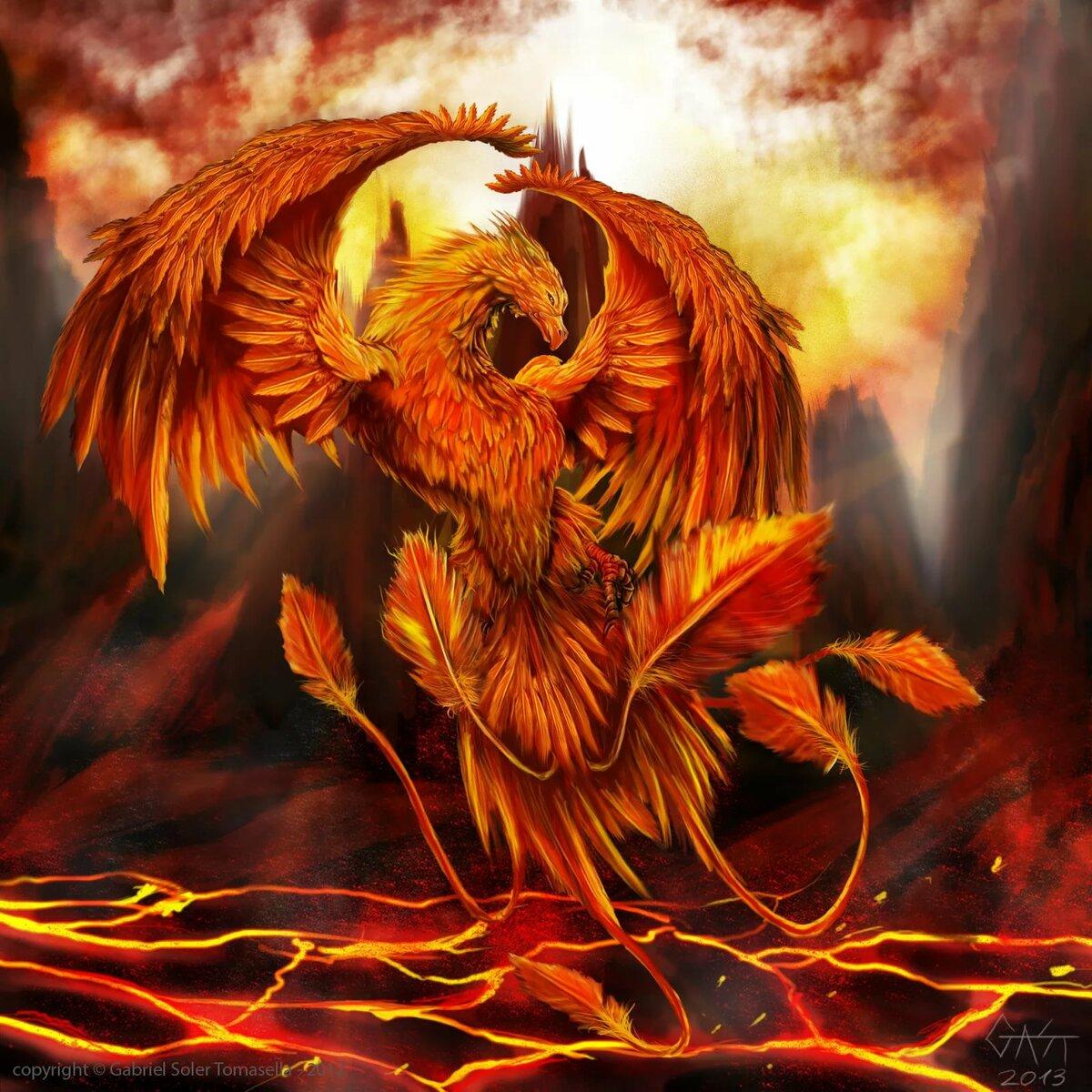 птица феникс восставшая из пепла картинки красивые худших