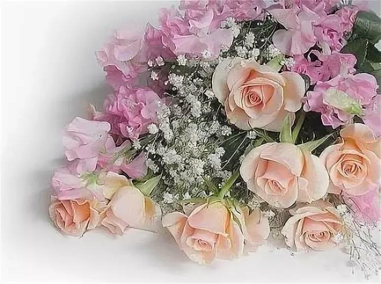 Цветок женское счастье картинки срисовать категорически