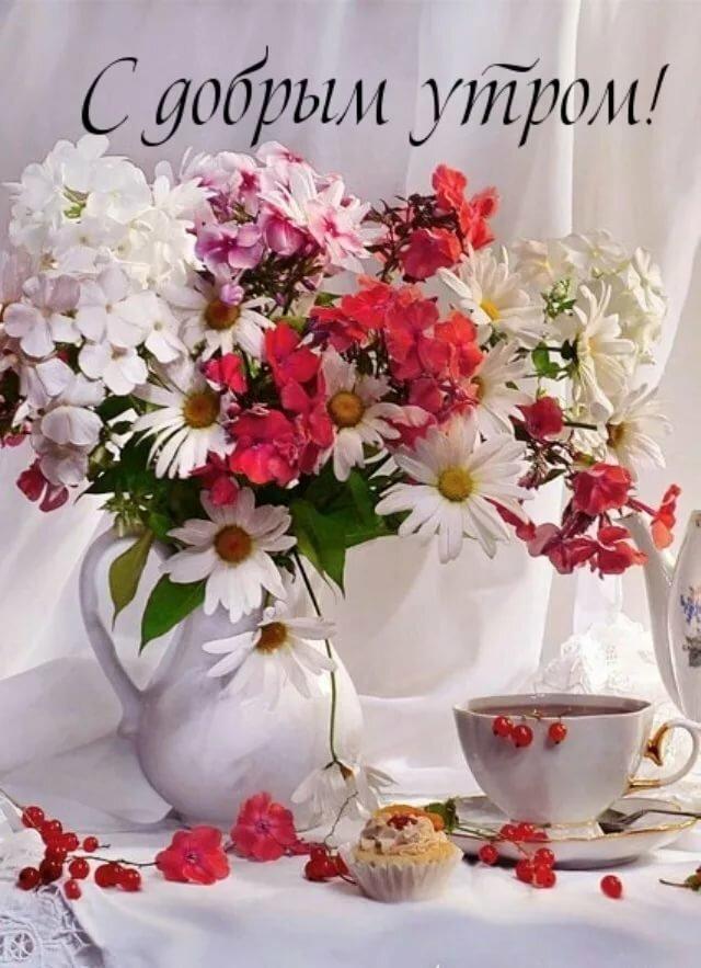 кактус картинка с пожеланием доброго и нежного утра каждый раз возвращаясь