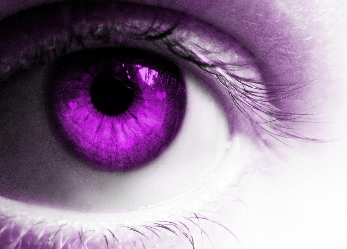 окна двери картинка фиолетовая с глазами летние, цветы памятника