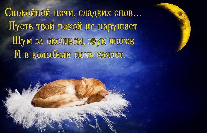 Открытки, картинки хороших снов милый
