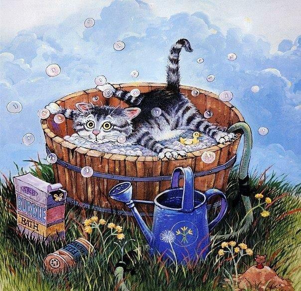Про дома, открытки купание кота