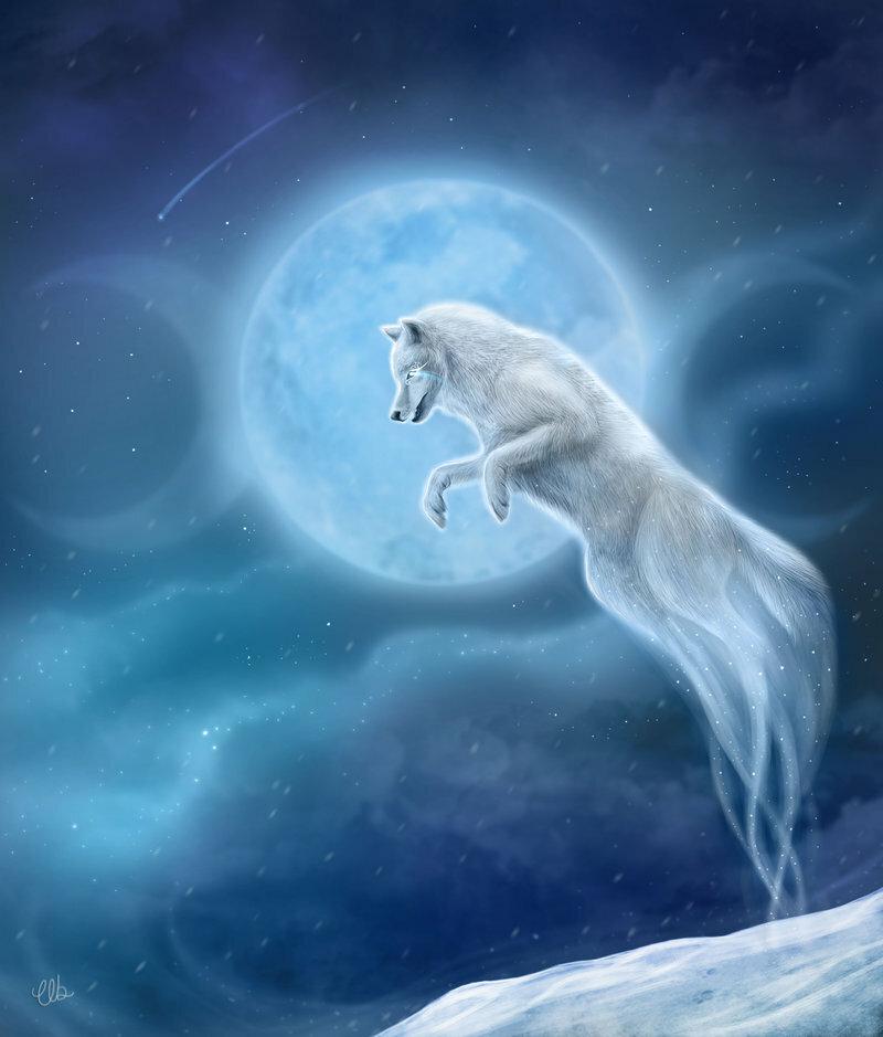 Белый волк в ауре картинка
