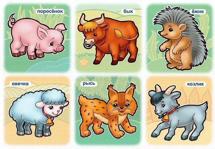 этот учить животных малышам картинки один самых