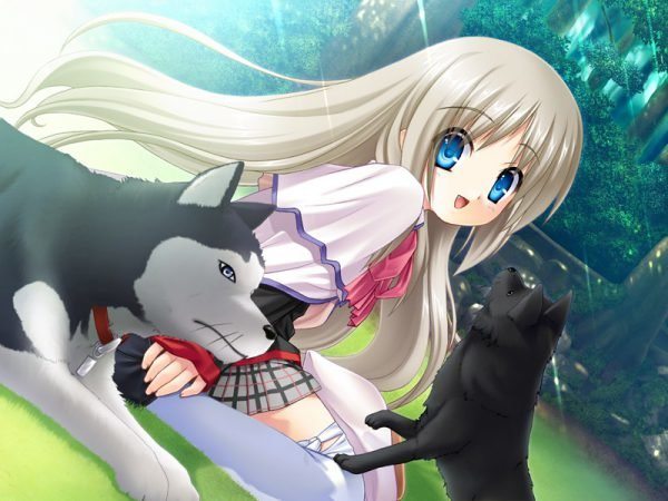 Картинки аниме девушка с собаками