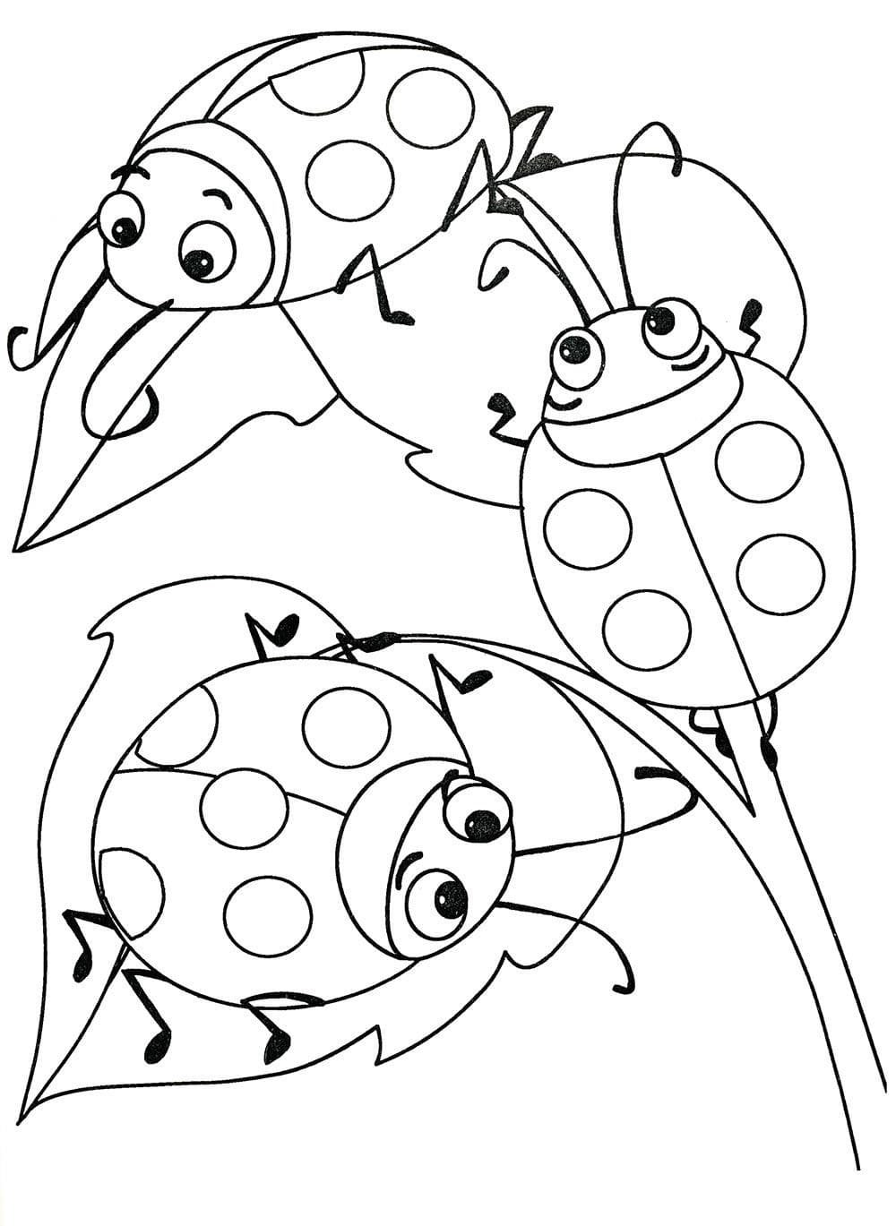 «Раскраски для малышей 3-4 года. Распечатайте онлайн ...