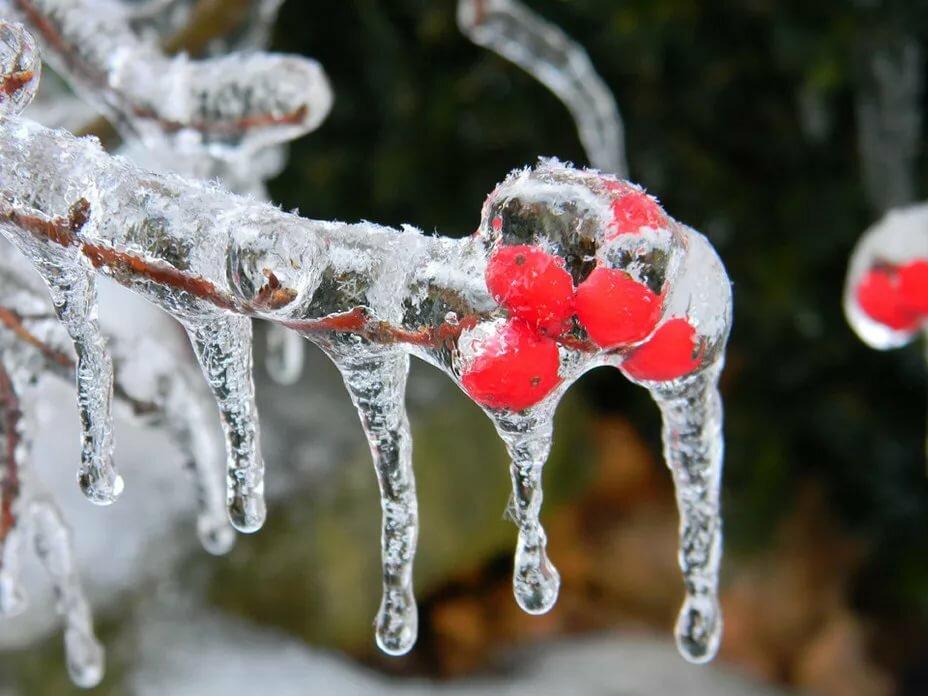 картинки снег и лед на улицах города