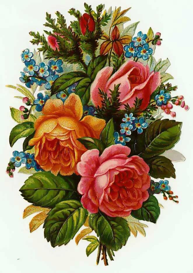 Открытки раскраски, старинные открытки с цветами картинки для вышивки
