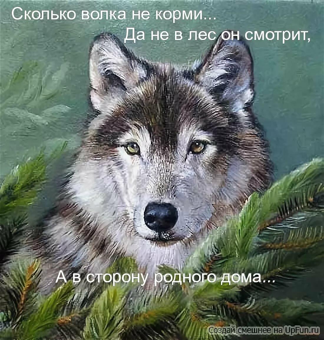 Волки картинка с надписью