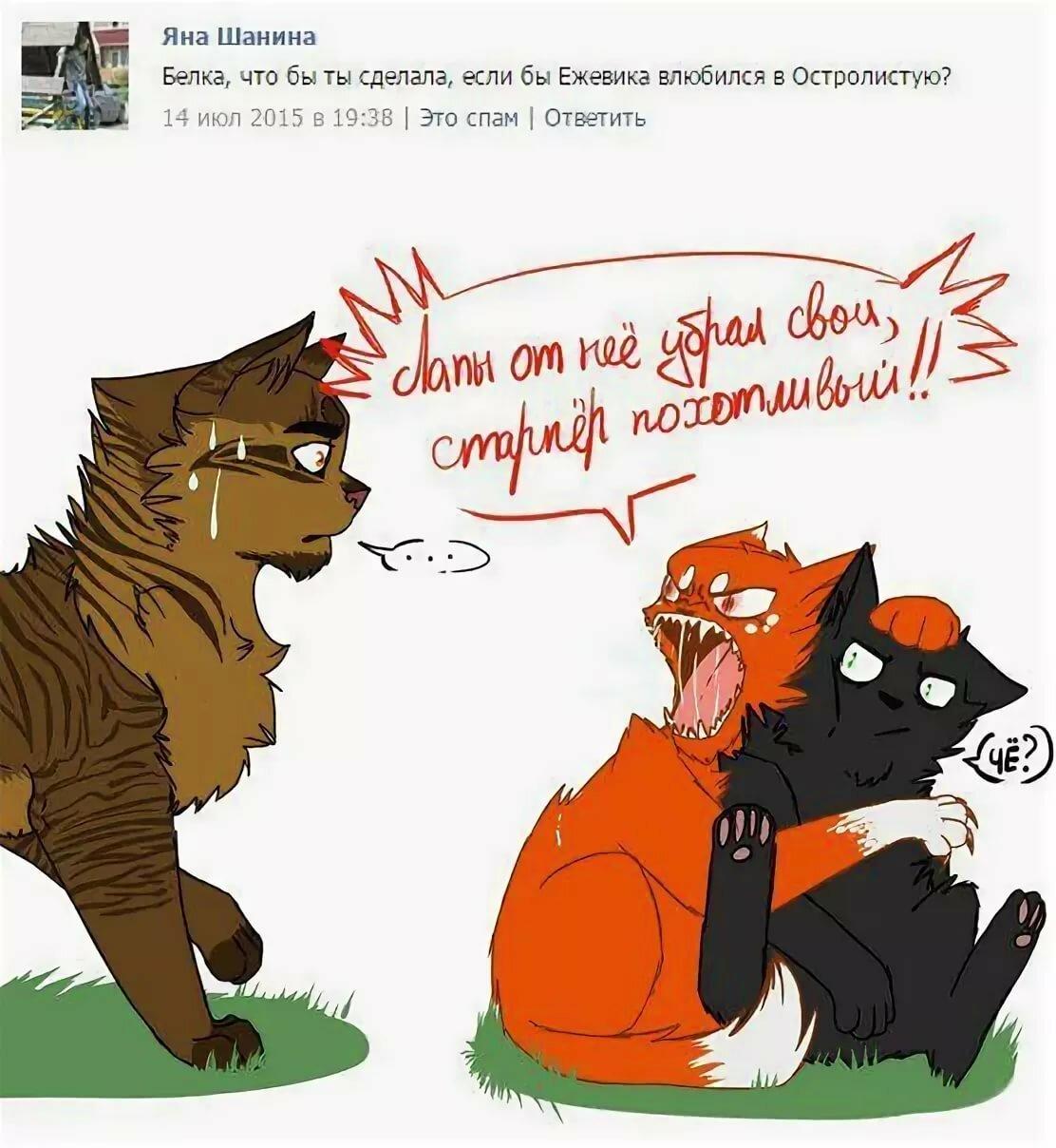 картинки коты воители смешные картинки читал