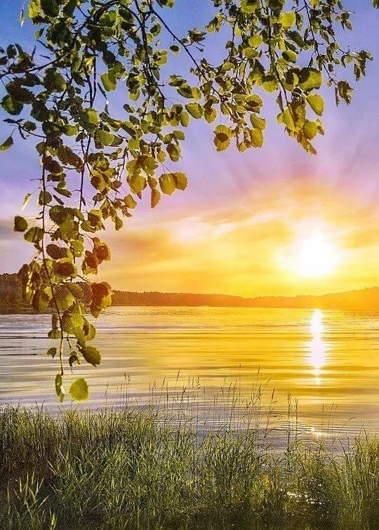 при открытка доброе утро рассвет именно