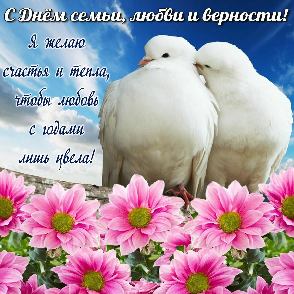 Живая открытка с днем семьи любви и верности