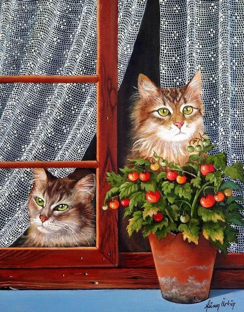 Картинка кошки на окошке