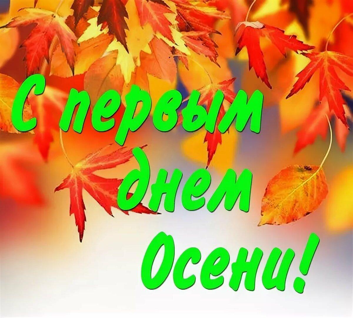Картинки осень для поздравлений с днем, зайка спасибо картинки