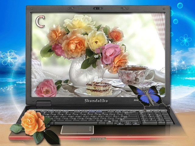 Женщина, картинки анимации на ноутбук