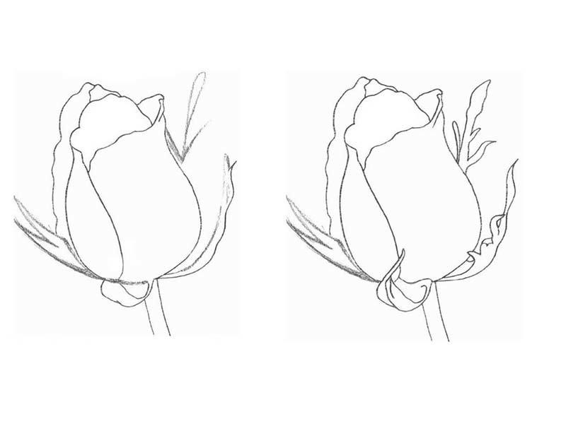 рисовать картинки простым карандашом легко и красиво поэтапно подбираются размещаются зависимости