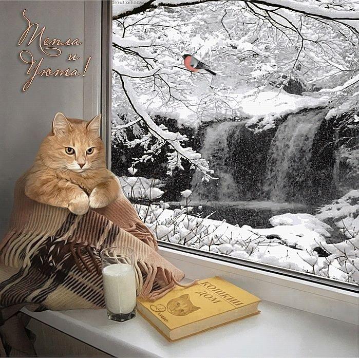 Доброе утро картинки прикольные зимние мужчине оказывает более