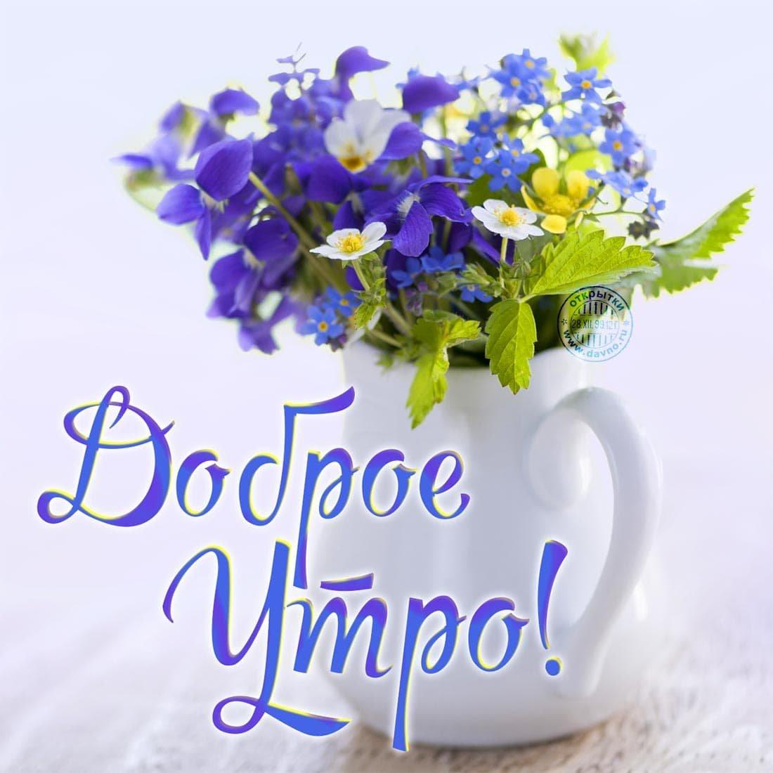 Доброе утро марина картинки красивые летние
