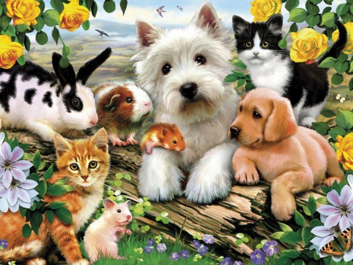 Кот рисунок, картинки на тему животные