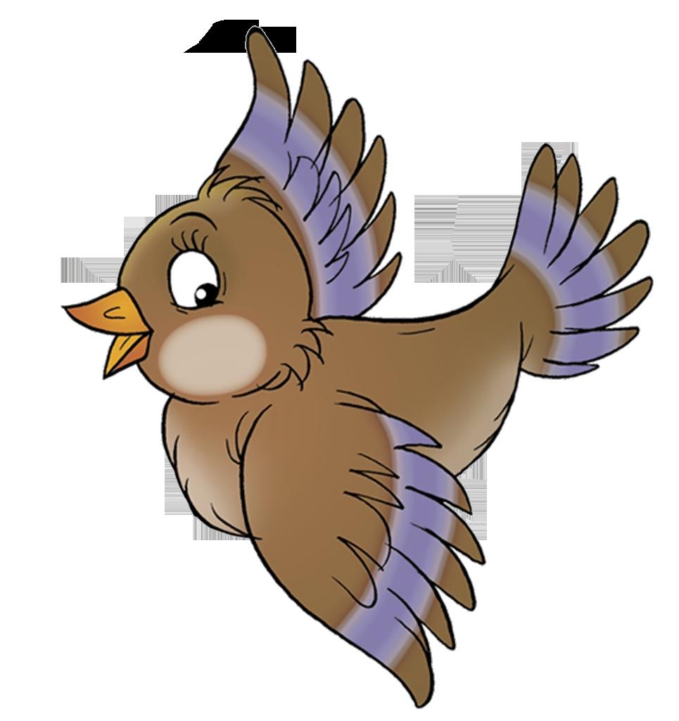 Птички в картинках детские