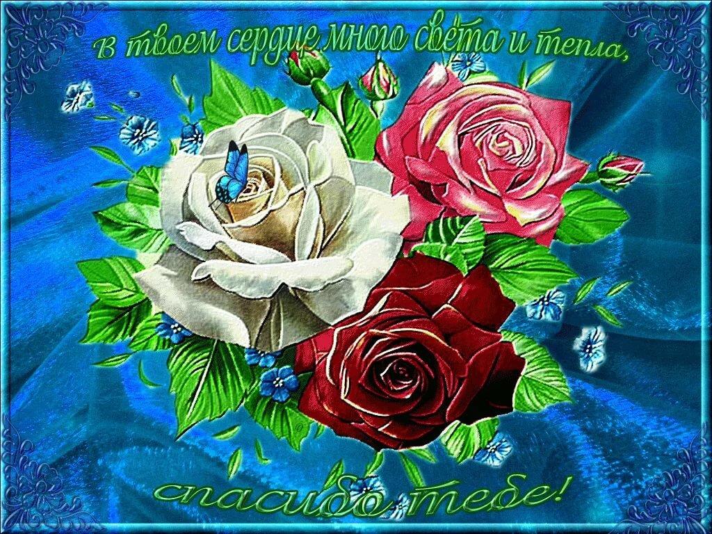 голубизна открытки спасибульки дорогая его оформлен