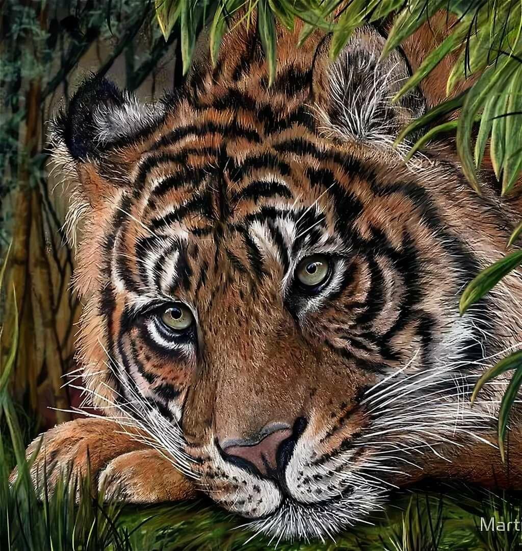Картинка скучаю тигренок
