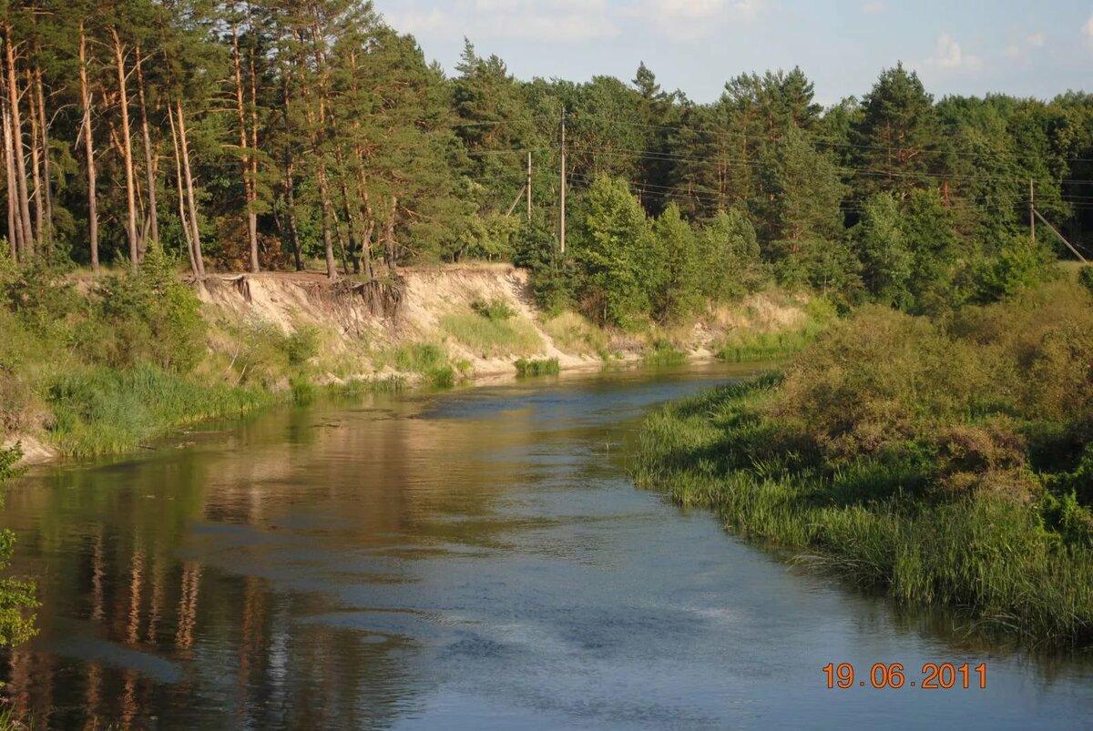 картинка природа курского края рисуют красивые миленькие