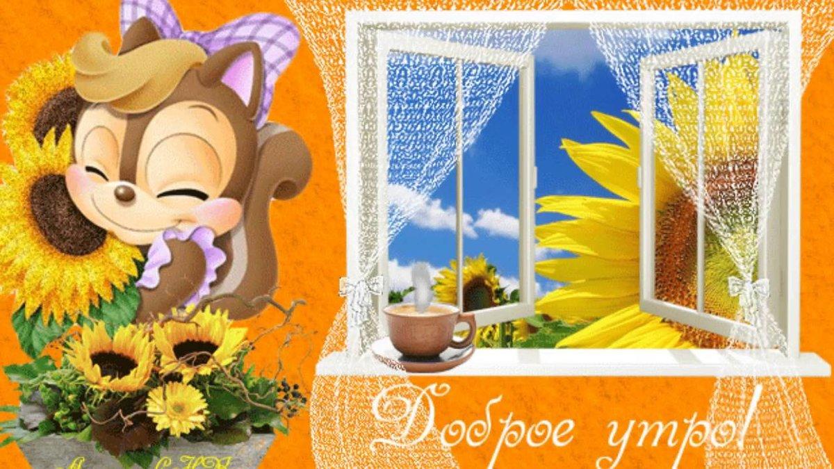 Красивые анимашки с добрым утром и хорошего дня на телефон, днем рождения