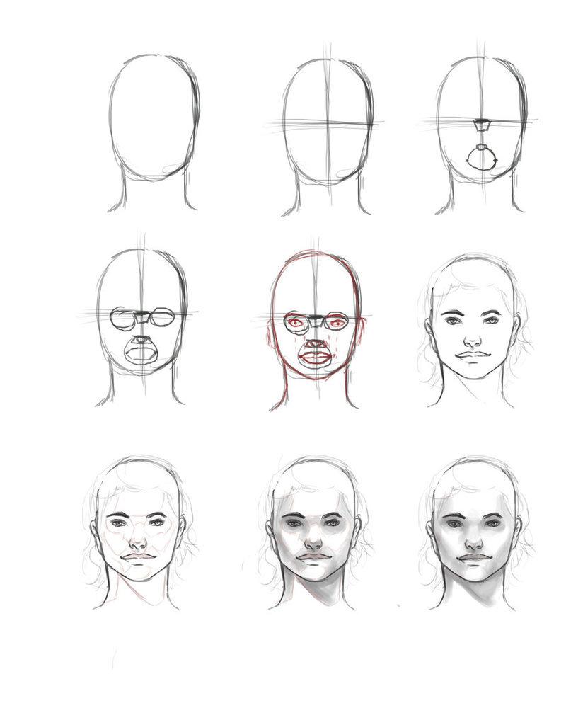 Уроки рисования портрета в картинках