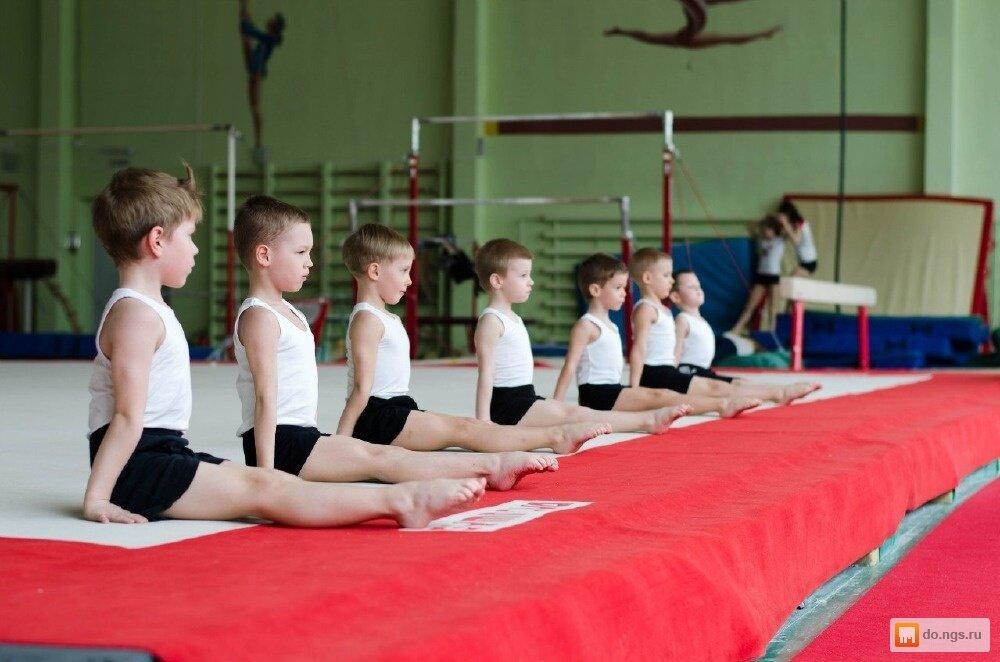 обучение гимнастике по картинками выглядела