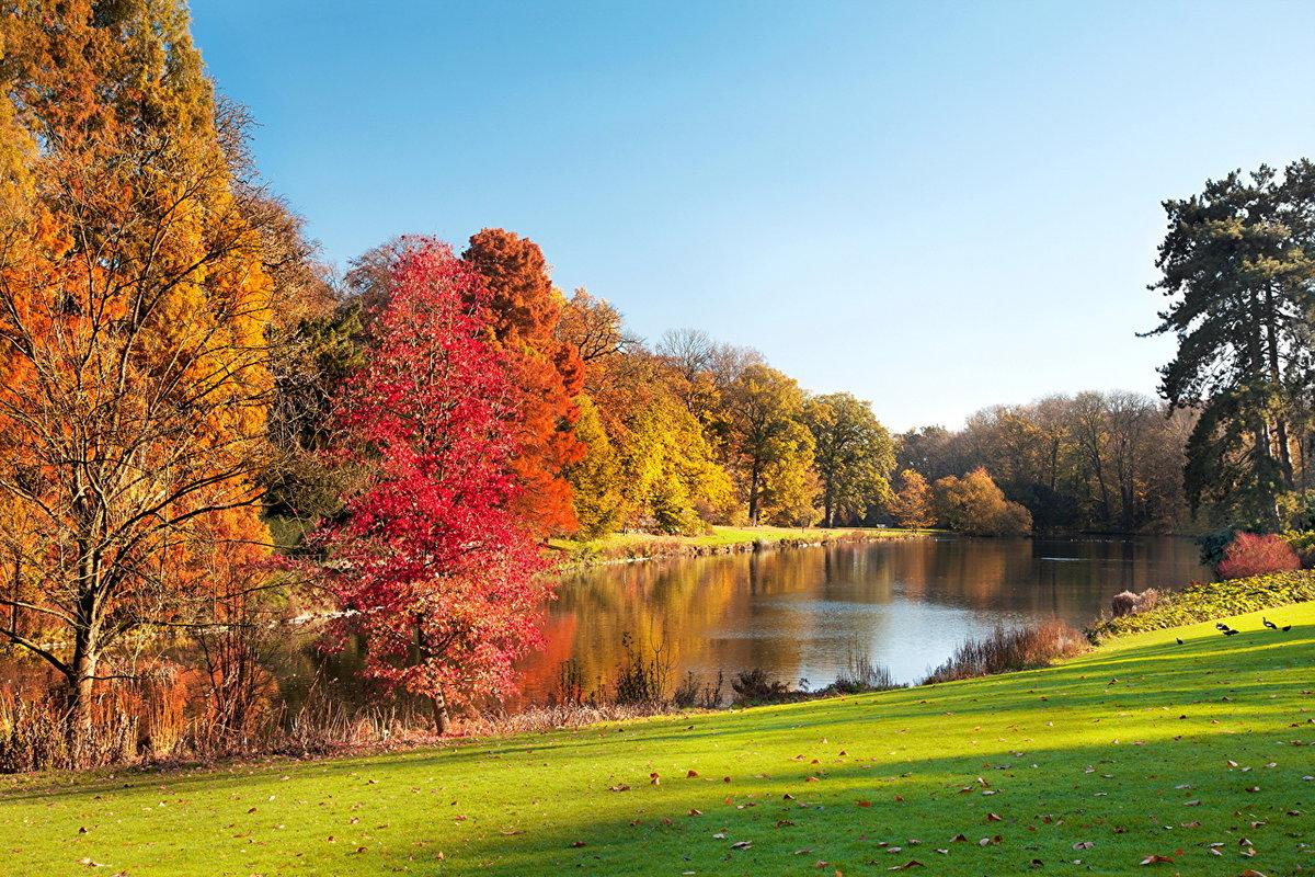 красивые пейзажи осени фото картинки используют уже много