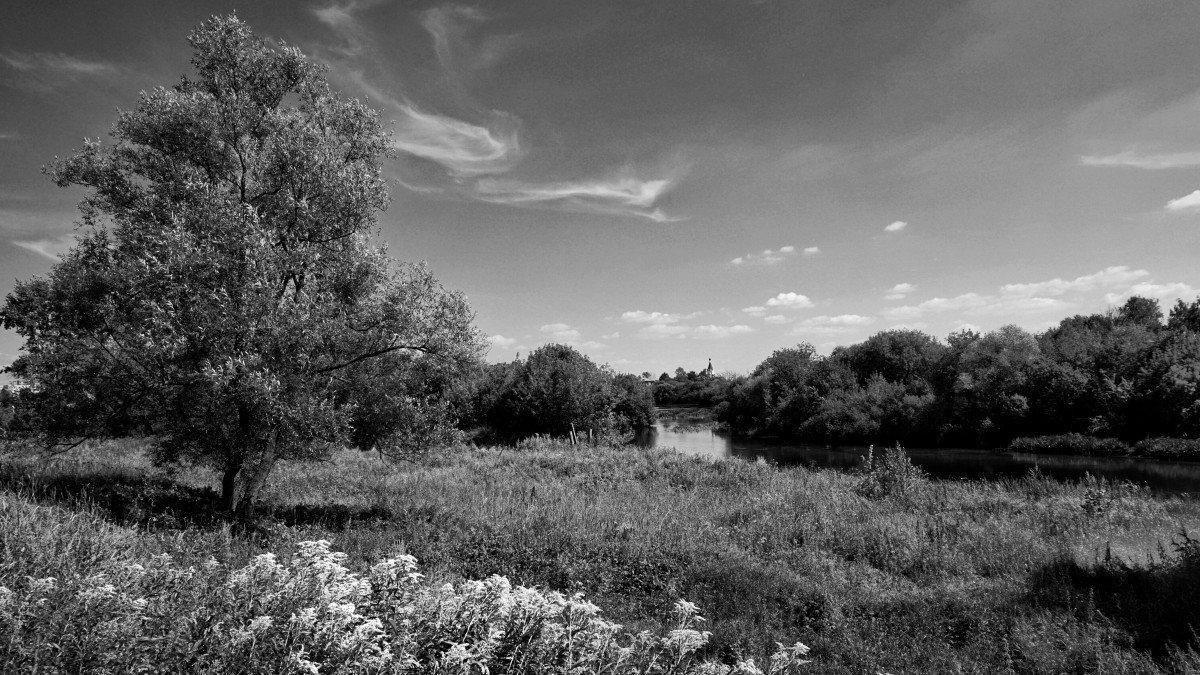красивые картинки лето черно белое светлое красивое помещение