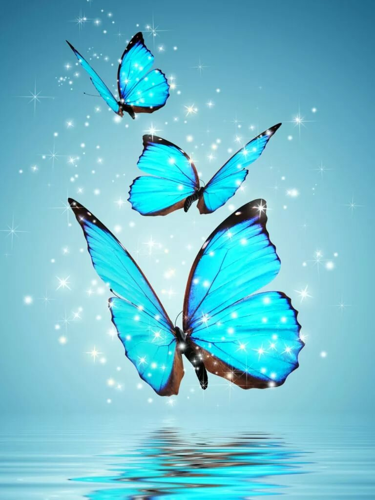 Картинки бабочками на телефон