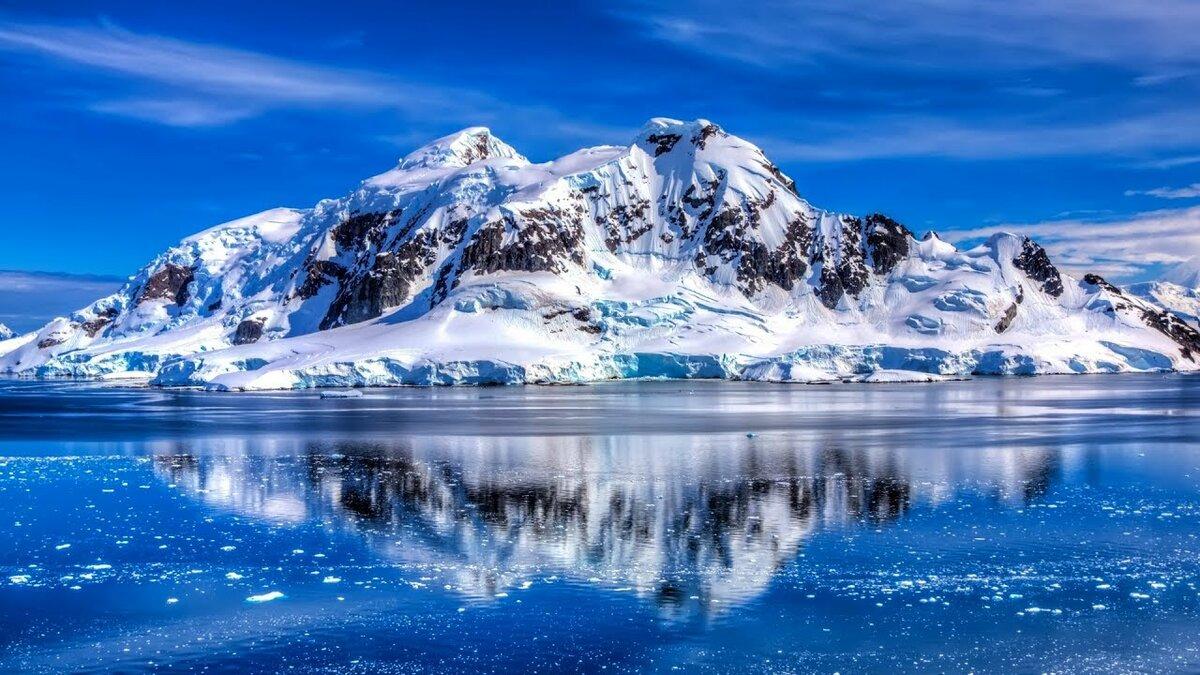 Антарктида картинки, картинки счастье