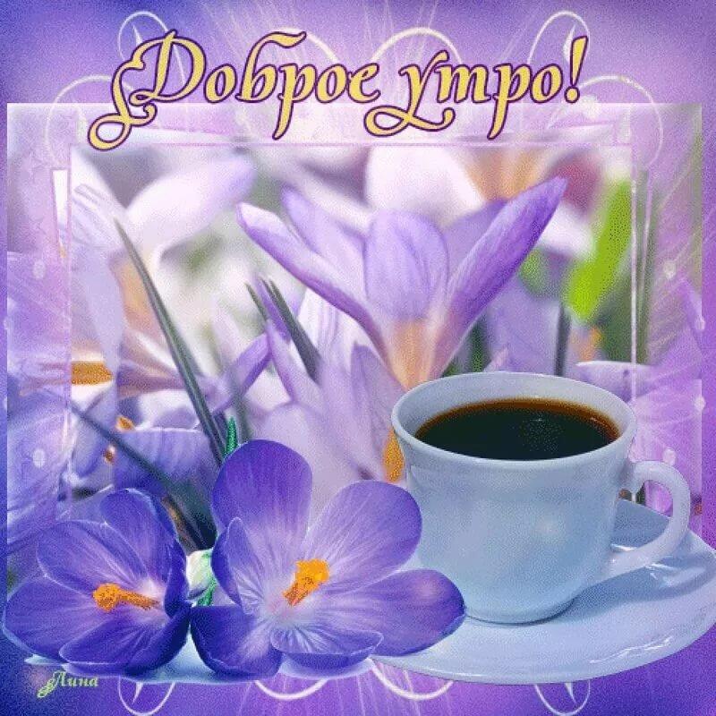 Очень красивые открытки с добрым утром