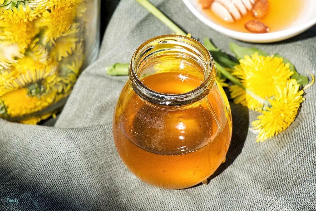 Мед из одуванчиков рецепт приготовления с фото