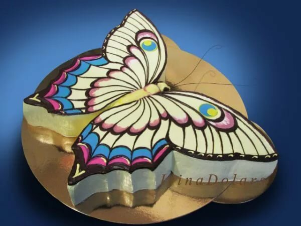 Картинки тортов в виде бабочки