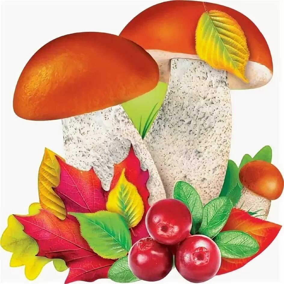 Картинки листочков и грибочков
