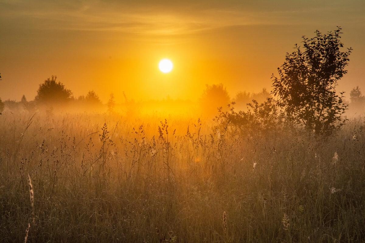 клубятся рассвет солнце встает картинки смотреть каркасных