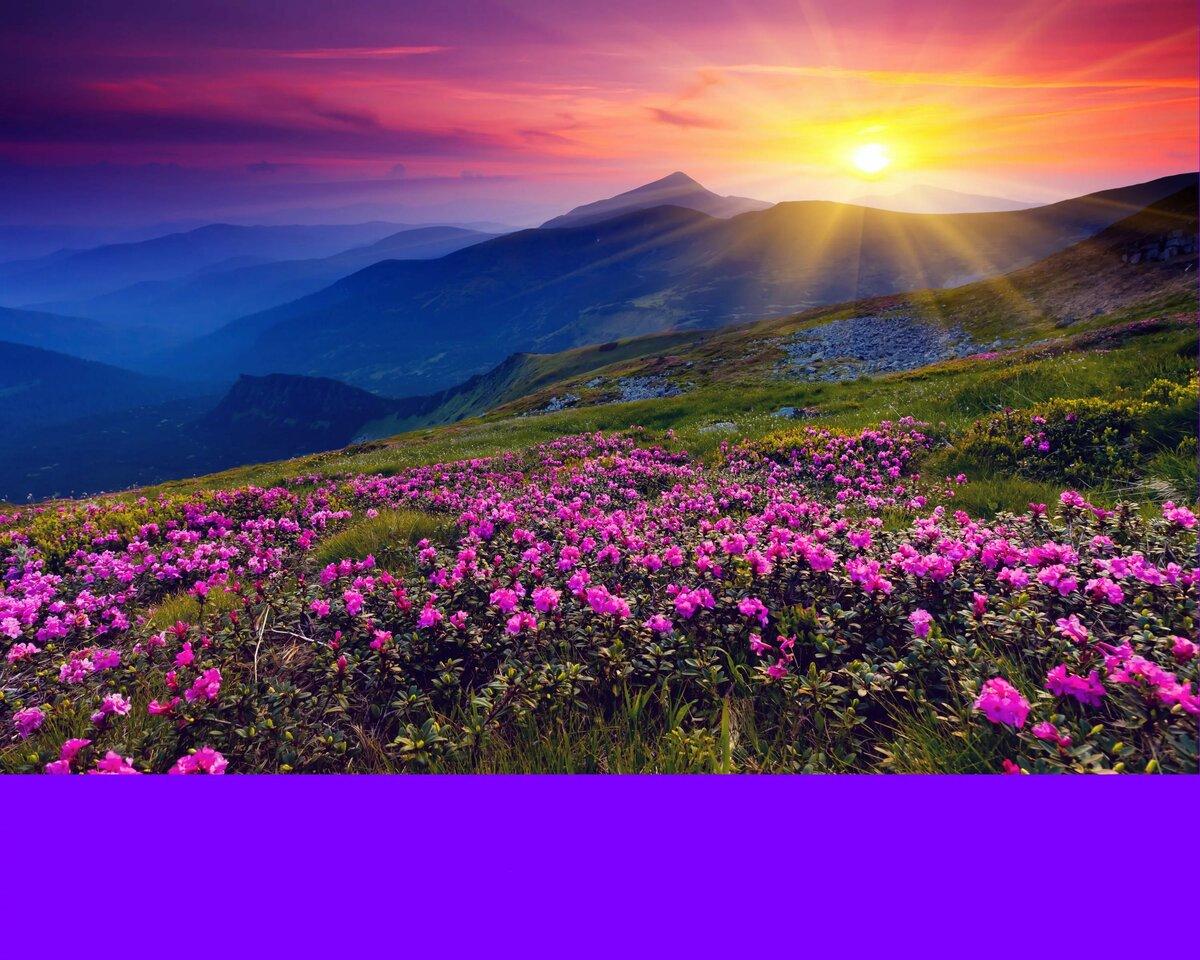 Картинки пейзажи природы, айфоне
