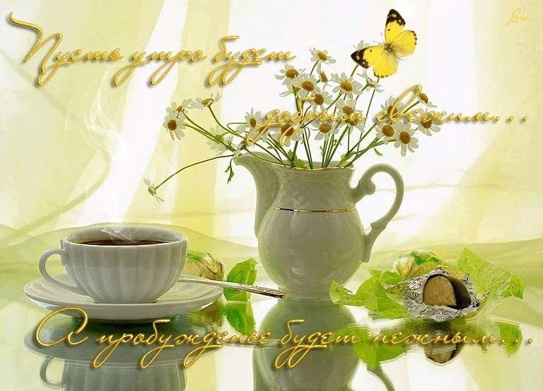 Чудесные открытки с добрым утром новым днем, мартышкой