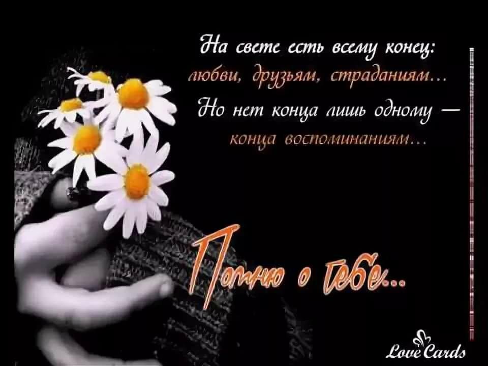 Открытки помню о тебе всегда, фото картинки открытка