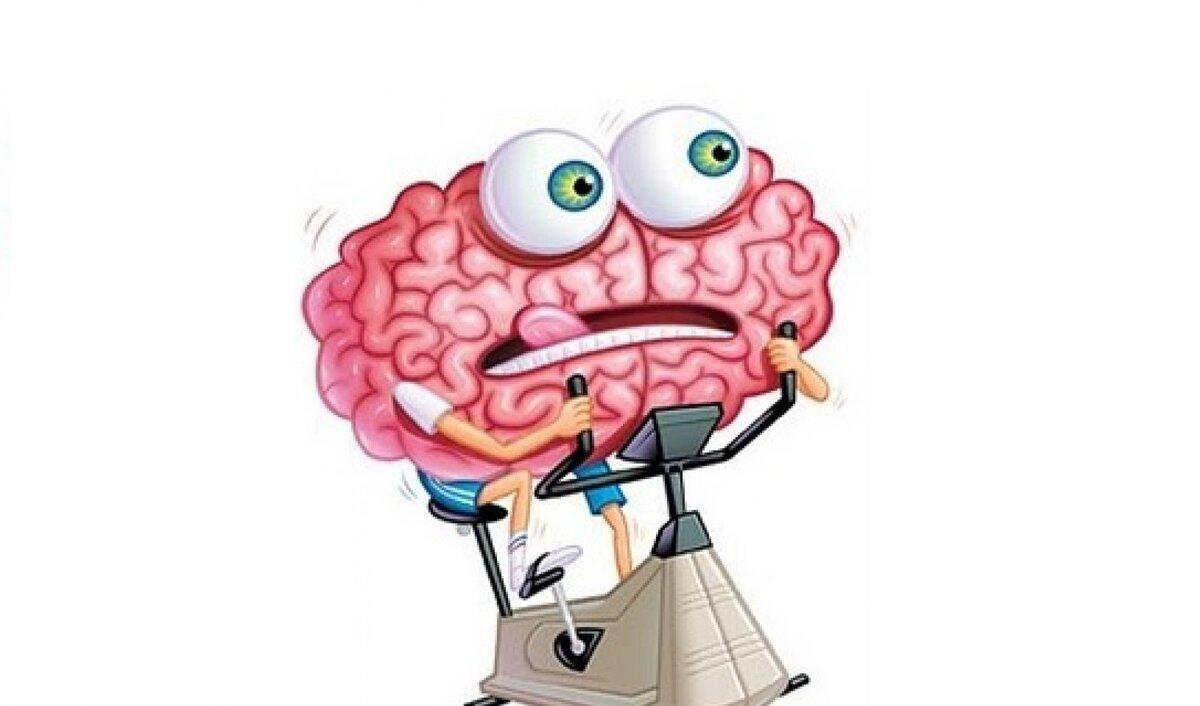 Картинки мозги прикольные
