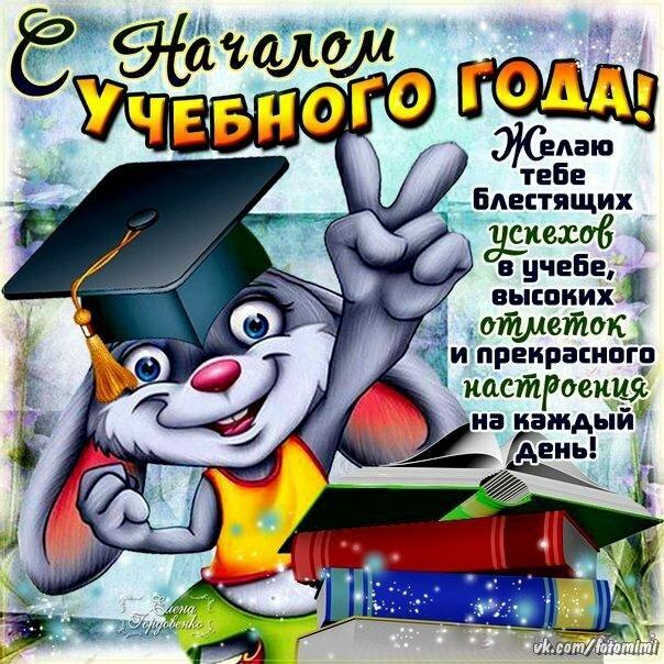 Картинки поздравление с началом учебного года, лошади